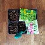 Gartenpläne